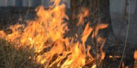 Zjarret – gjendje e jashtëzakonshme në Kili