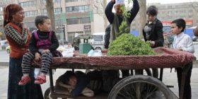 Kinë: Arrestohen ujgurët që dyshohet se luftuan për IS-in