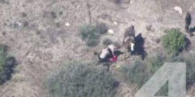 Pamje shokuese: 10 policë rrahin të ikurin (Video)