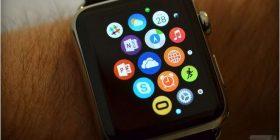 Zhvilluesi hakon orën e Apple-it, instalon një shfletues uebi