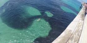 Menduan se ishte naftë, por kur u afruan gjetën diçka tjetër (Video)
