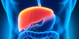 14 ushqime që pastrojnë mëlçinë tuaj