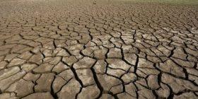 Studimi tronditës: Toka është futur në fazën e shfarosjes