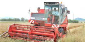 Kryetari Haziri hapi zyrtarisht fushatën e korrje-shirjeve