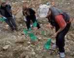 Gjetaj: S'ka varrezë masive në Ranillug