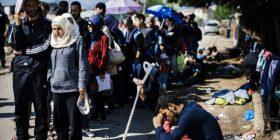 Mijëra imigrantë kaluan nëpër Preshevë