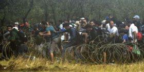 Maqedoni 2 mijë emigrantë çajnë gardhin rrethues! (Foto/Video)