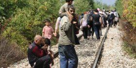 Imigrantët kaluan të papenguar në Maqedoni
