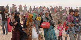 Irani e pranon se ka shumë viktima në Siri