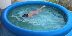 Lajmi i fundit: Mbytet në bazenin e gomës 2 vjeçarja nga Podujeva