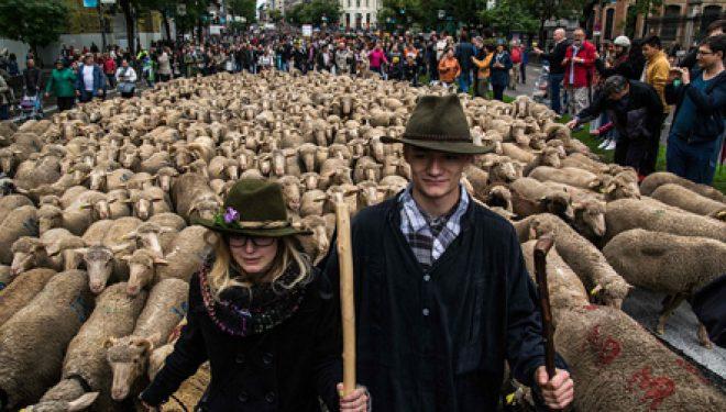 """Delet """"pushtojnë"""" Madridin (FOTO)"""