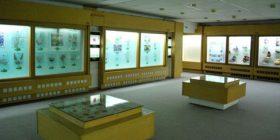 Ministria bën hapin e parë konkret për Muzeun e Natyrës