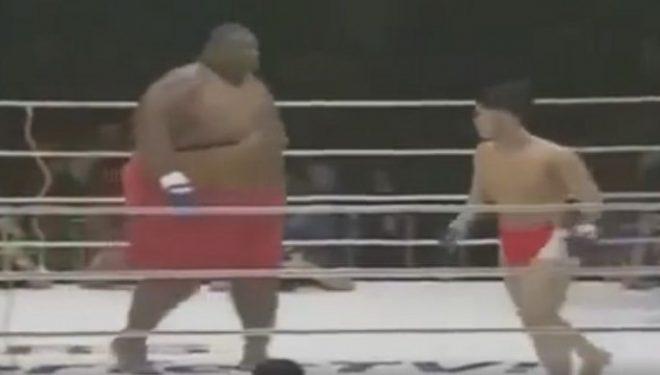 Çfarë ndodh në ring kur një 74 kilogramësh sfidon një 272 kilogramësh? (VIDEO)