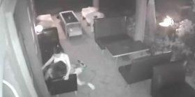 Kamerierja seks me klientin jashtë restorantit (Video)