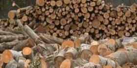 Komuna e Prishtinës nis shpërndarjen e drunjve për familjet me asistencë sociale