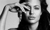 Zbulohet i dashuri i ri i Angelina Jolie?