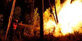 Portugali: Nga zjarret kanë humbur jetën dhjetëra vetë