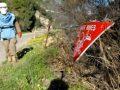 Minat në Kosovën e pasluftës morën jetën e 177 personave, lënduan rëndë 500 të tjerë