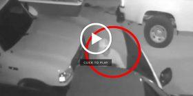 Hajni shkon për të vjedhur por e lë përgjysmë për të bërë seks (Video)