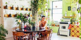 Harroni kondicionerin: Këto lule freskojnë banesën plotësisht dhe në mënyrë natyrale
