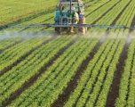 Ndryshimi i temperaturave ka ndikuar në  bujqësi