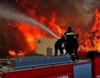 Zjarret në Greqi, flakët i afrohen Athinës