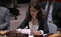 'Kam informacione të dorës së parë, Çitaku do të jetë krydiplomatja e ardhshme e Shqipërisë'