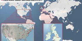 Gjashtëdhjetë zhurma të forta në gjithë botën, mbetet mister origjina e tyre