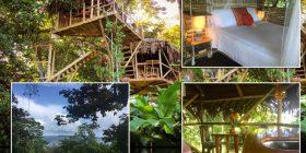 Shtëpia e ndërtuar në dru në zemër të xhunglës me pamje nga deti, në të cilën të gjithë dëshirojnë të kalojnë vikendin (Foto)