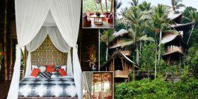 Shtëpia unike e ndërtuar në xhunglën e Balit brenda të cilës nuk mungon asgjë (Foto)