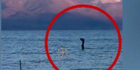 Përbindëshi Loch Ness filmohet në Shqipëri (Video)