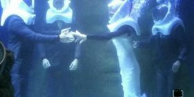"""Martohen brenda akuariumit gjigant të mbushur me ujë, nusja dhe dhëndri thanë """"po"""" (Foto/Video)"""