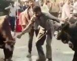 Deshi të ndalojë demat që të ndeshen, e pësoi keq burri kur e futën në mes (Video, +18)