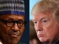 Presidenti nigerian, vizitë të hënën në Uashington