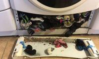 Çorapet e humbura mund t'ju ketë 'ngrënë' makina e larjes (Foto)