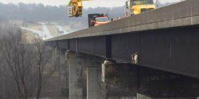Intervenimi special për shpëtimin e dy dhive, kishin ngecur në pjesën anësore të urës (Foto)