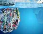 Kripa e detit është kontaminuar nga plastika (Video)