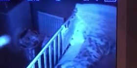 Babai i tmerruar u 'ngri prej frike' kur pranë krevatit të fëmijës pa një siluetë të shndritshme (Video)