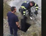 Ishte futur në pusetë, rrezikonte të mbytej – zjarrfikësit i shpëtojnë jetën një qeni në Suharekë (Video)