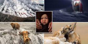 Gara për imazhet më të bukura në National Geographic (Foto)