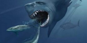 Zbulohet shkaku i zhdukjes së gjallesave para rreth 3 milionë vjetësh në Tokë