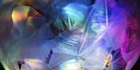 Imazhe magjepse të fluskave të ngrira (Foto)