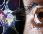 Sëmundja e Parkinsonit: Simptoma në sy që shërben si shenjë paralajmëruese
