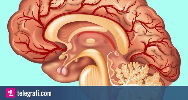 Faktet më interesante për trupin e njeriut
