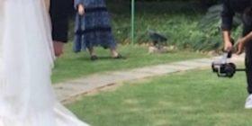 Nusja kineze eci drejt altarit, me një mace që nuk i largohej nga pjesa pasme e fustanit (Video)