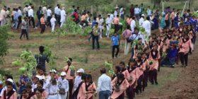 Për gjashtë orë mbollën 66 milionë fidanë, 1.5 milionë vullnetarë shënuan Rekord të Ginisit (Video)