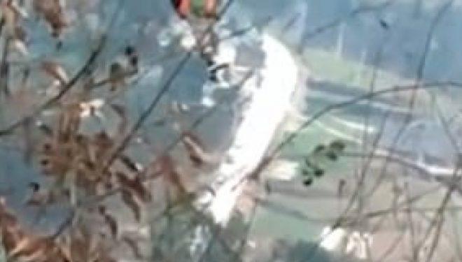 Qëndroi  e qetë për gjysmë ore e bllokuar në zip line, derisa ndodhej në dhjetëra metra lartësi (Video)