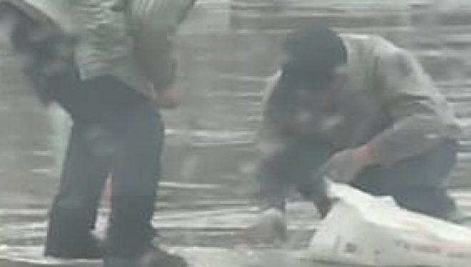 Xhamin që iu ra nga makina, të moshuarit e mblodhën nga rruga nën shi të rrëmbyeshëm (Video)