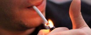 Cigarja rrezikon edhe shikimin