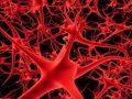 Zbulohet ilaçi që mbron nga humbja e kujtesës në pleqëri
